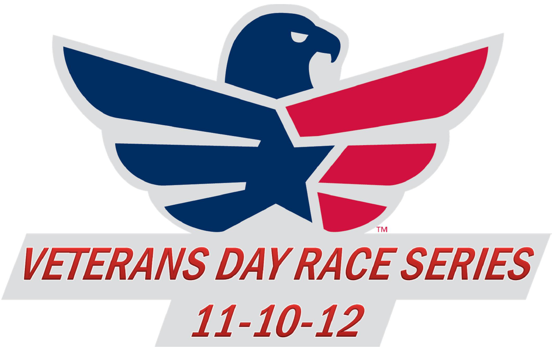 Veteran's Day - Lessons - Tes Teach